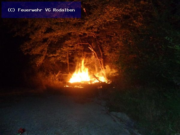 B2.02 - Flächenbrand groß vom 13.07.2019  |  (C) Feuerwehr VG Rodalben (2019)