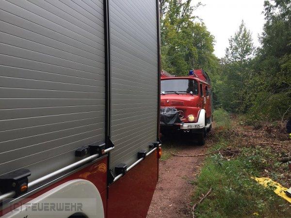 T2 - Person in Gefahr vom 27.08.2017  |  (C) Feuerwehr VG Rodalben (2017)