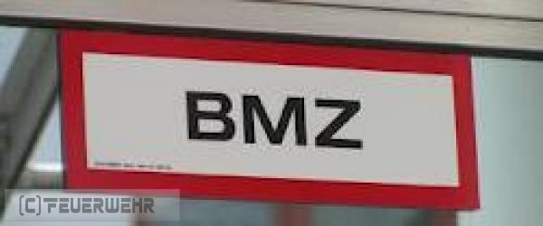 B2.07 - Brandmeldeanlage vom 01.05.2021     (C) Feuerwehr VG Rodalben (2021)