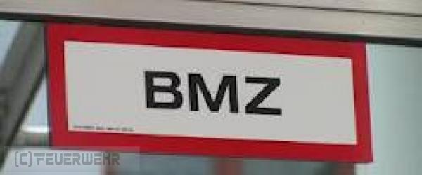 B2.07 - Brandmeldeanlage vom 13.06.2021     (C) Feuerwehr VG Rodalben (2021)