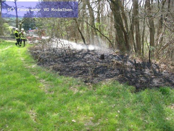 B6 - Kleinbrand vom 29.04.2017  |  (C) Feuerwehr VG Rodalben (2017)